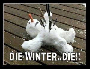 die_winter