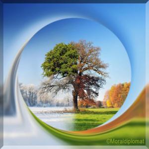 treeology_2