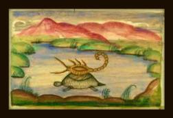 scorpion_turtle