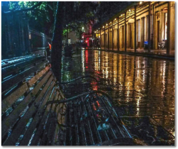 Rainy-Night-in-New-Orleans