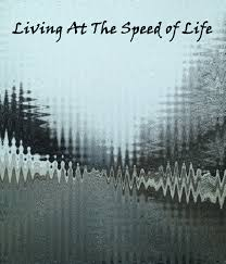 speed_of_life