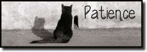 patient_cat