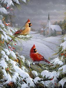 cadinal_church_snow