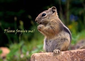 forgive_me1111
